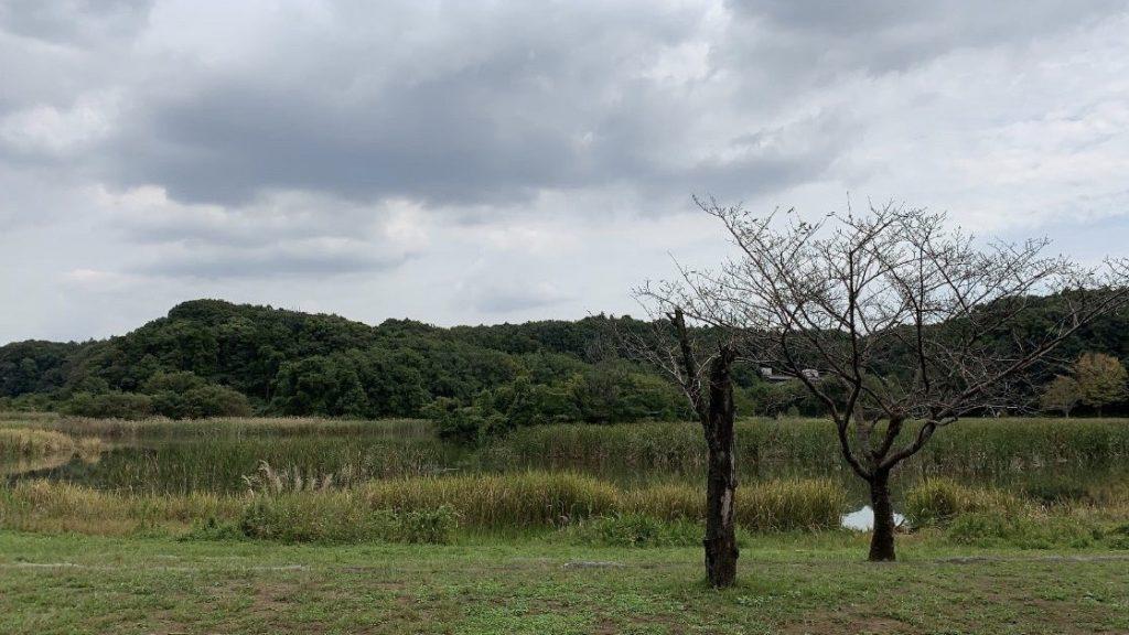 10月2週(福島)